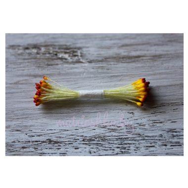 Тычинки каплевидные жёлтые с красным верхом крупные