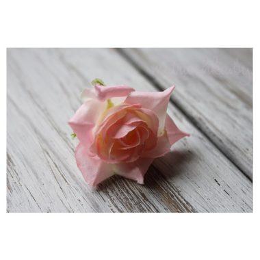 Роза Ландора «Молочно-розовый»