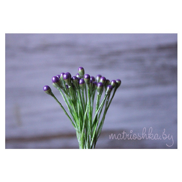Тычинки Люкс «Фиолетово-зелёный»