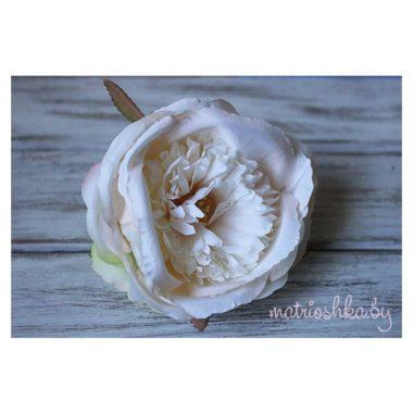 """Роза пионовидная """"Бело-персиковый"""""""