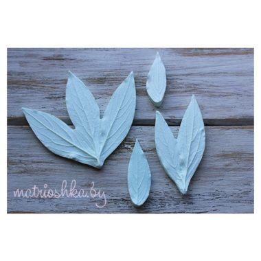 Полный набор молдов Листья пиона натуральные (4 шт)