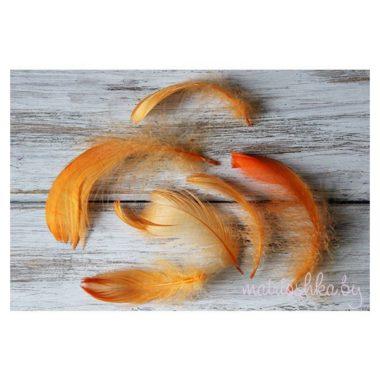 Перья пушистые «Оранжевый», 10 штук