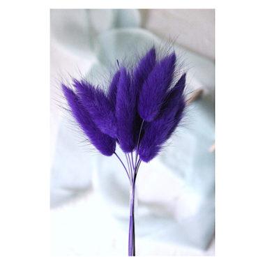 """Лагурус """"Тёмно-фиолетовый"""", 9 шт"""