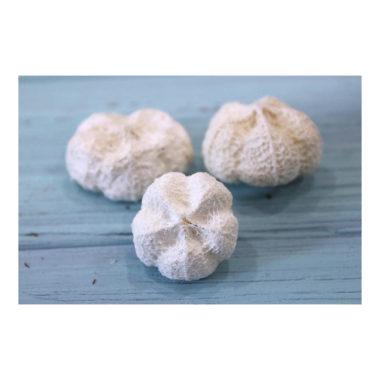Плод Парас Пипл отбеленный, 2-4 см